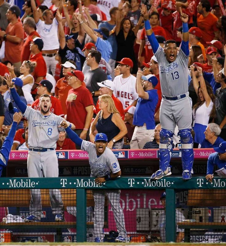 KC Royals - 2014 ALDS game 2 And then theres Salvy standing on the rail....Thats 100% safe!