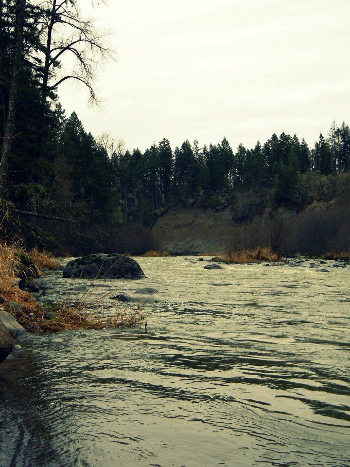 Fort lewis on pinterest fort lewis washington the news for Nisqually river fishing