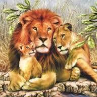 Картинки по запросу картинки для декупажа львы