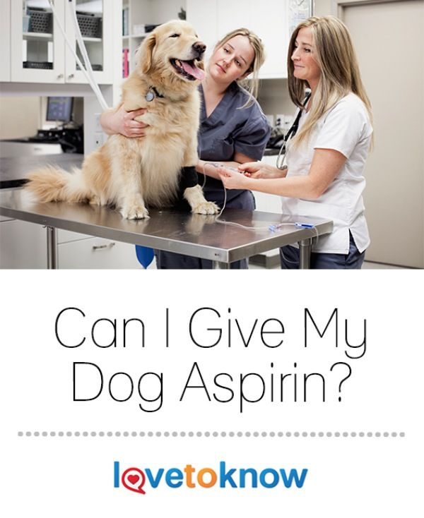 Baby Aspirin Dog Dosage