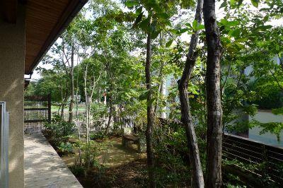 雑木林 庭 - Google 検索