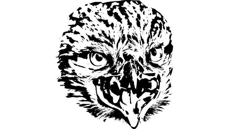 Falcon, head of predator is a T Shirt designed by rostik924 to illustrate your life and is available at Design By Humans