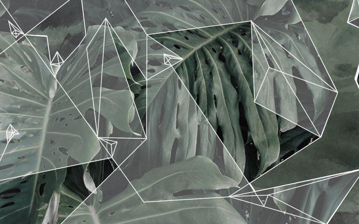 FREE Digital Wallpapers — PiperWinston