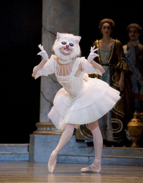 PNB's white cat in Sleeping Beauty