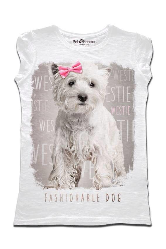 4103 Best Westies Images On Pinterest Westies White