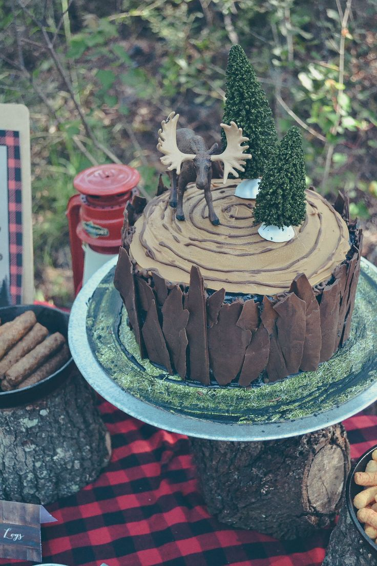 A LumberJack 1st Birthday Party In The Woods//Fawn Over Baby