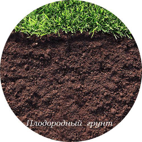 http://nachastroika.ru/stati-stroitelstvo/plodorodnaja-pochva-grunt-zemlja.html