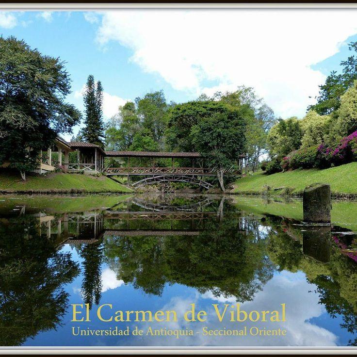 El lago de la seccional oriente, un buen espacio para diferentes actividades, como lo es el yoga.