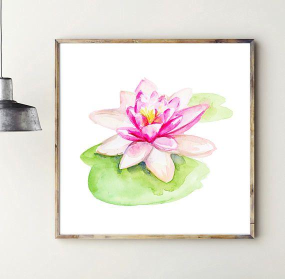 Waterlelie schilderij   print  roze lotus illustratie