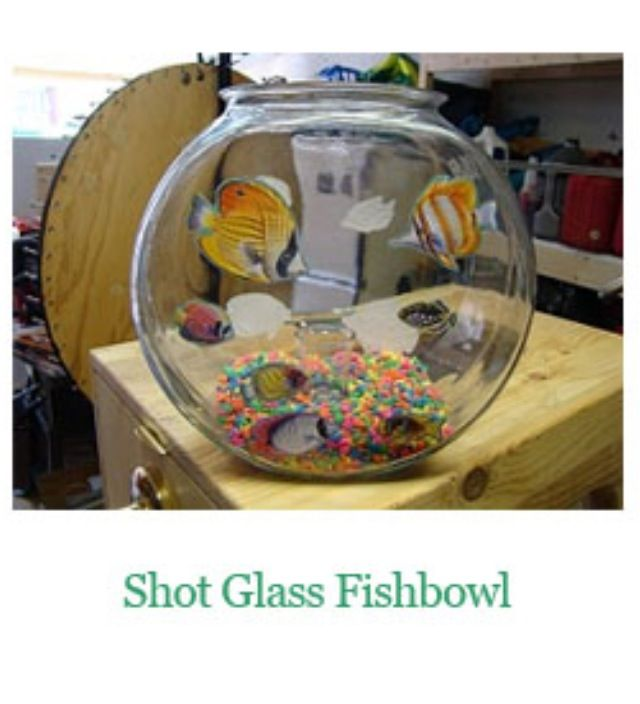 It's exactly what it says, A shot glass in a fishbowl. Put the fishbowl at the bar, fill it to the top with water. Your guests drop a loonie in the fishbowl, if it lands in the shotglass they win a free drink. But beware, it's much tougher than it looks!