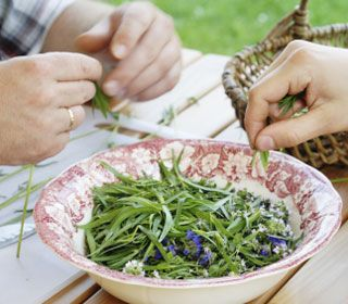 A little tarragon goes a long way—in salads, pasta sauces, and even vinegars.
