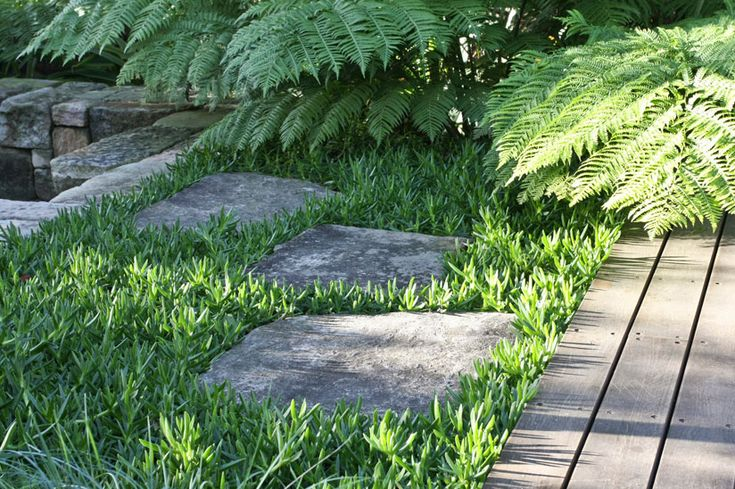 40 best images about stepping stone ideas on pinterest for Garden design level 3