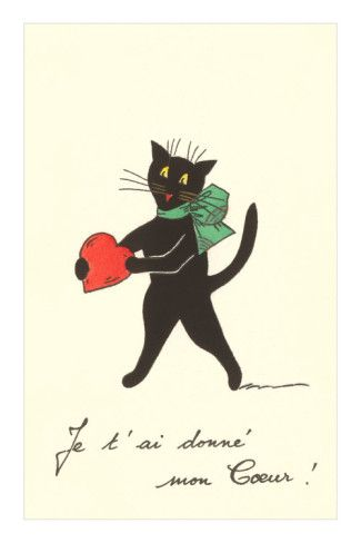 Black Cat with Heart, French I've Given You My Heart Photo