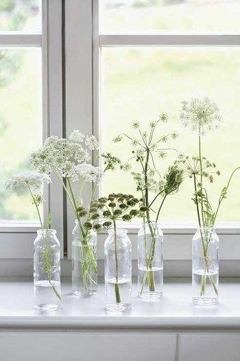 牛乳瓶のような素朴な空き瓶に、野の花をつけたシンプルな窓辺のデコレーション。素朴な花も窓辺の光を受けると、花の形や茎のラインがとてもきれいに見えますね。