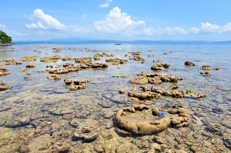 Bangka Island, North Sulawesi © 2012 逆行