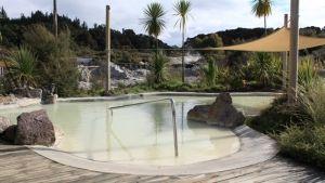 Hell's Gate Spa #Rotorua