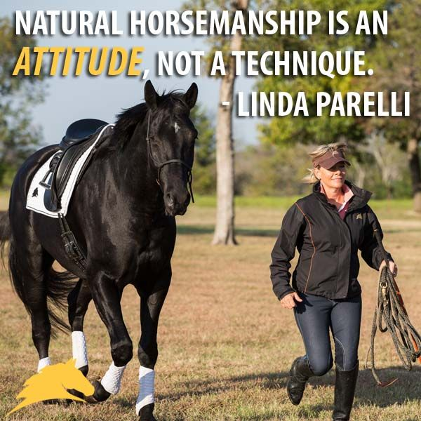 """Natural Horsemanship is an attitude, not a technique."" - Linda Parelli"