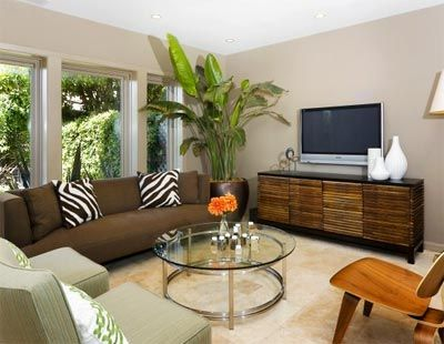 Brown And Sage Living Room Design, Pictures, Remodel, Decor And Ideas    Page 4 Part 38