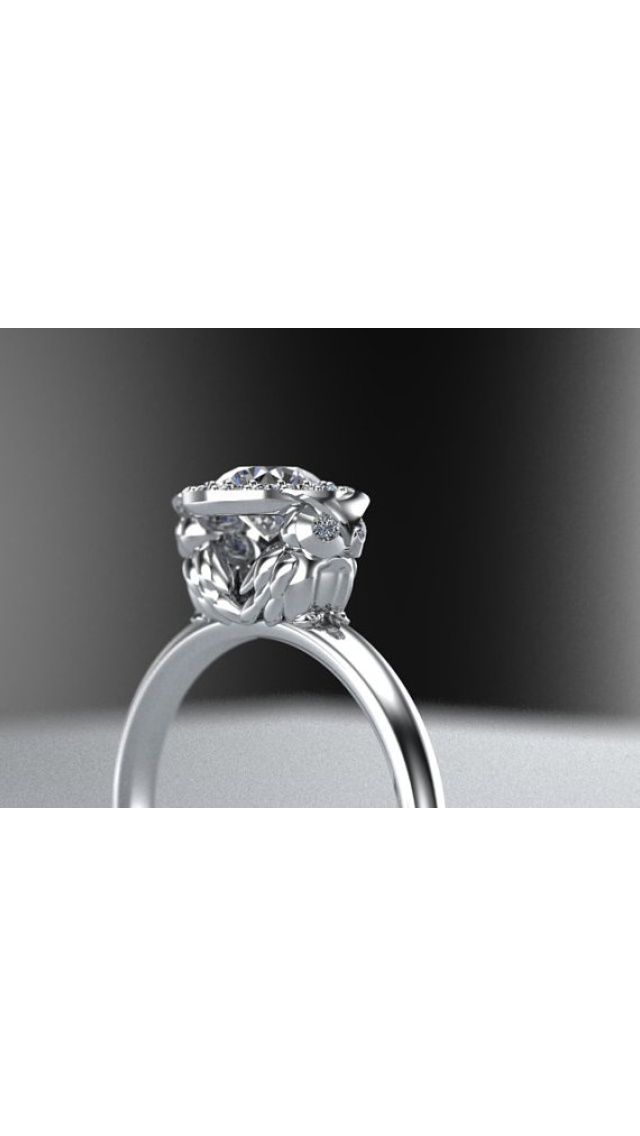 owl engagement ring wow owls pinterest the o39jays With owl wedding rings