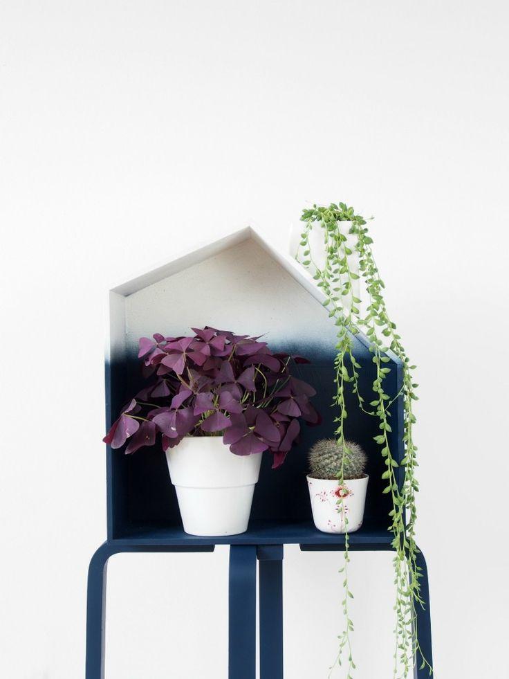 die besten 25 setzkasten ikea ideen auf pinterest setzkasten str hnchen im pony selber. Black Bedroom Furniture Sets. Home Design Ideas