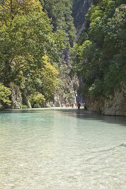 Acherontas river by patasos(kogiot), via Flickr