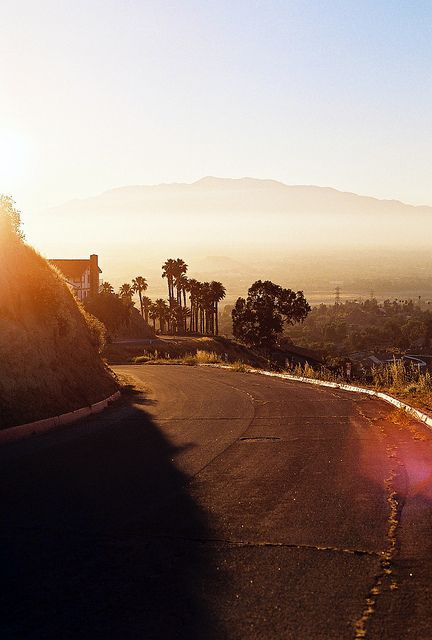 1349 Best Images About Los Angeles On Pinterest Dodger