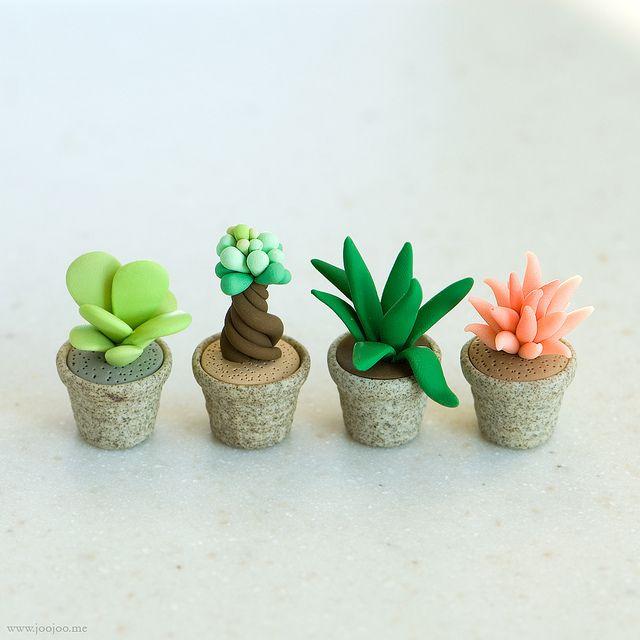 Miniature succulent by {JooJoo}, via Flickr