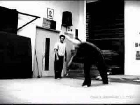 Cyril Raffaelli - freerunning, acrobatics