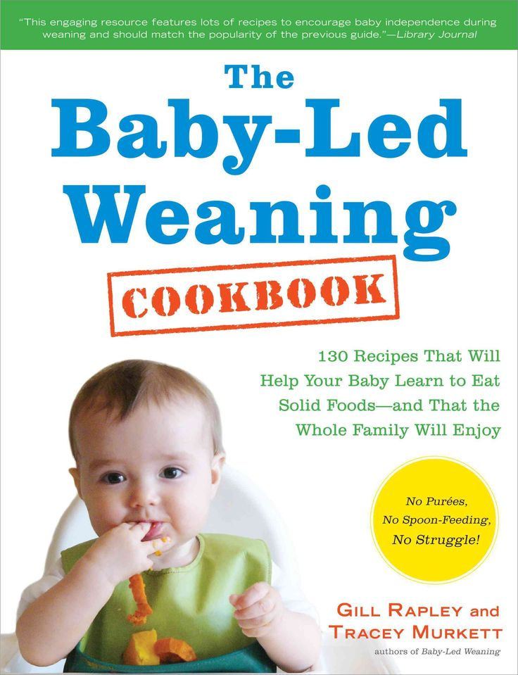 Baby Food Solid Cookbook  Months