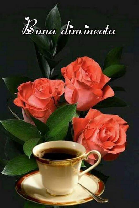 Buna dimineața - Rodica Rodica - Google+