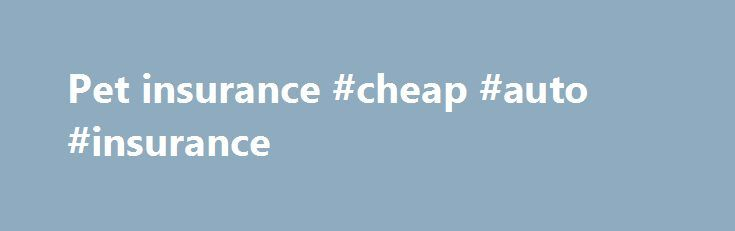 Pet insurance #cheap #auto #insurance http://insurances.nef2.com/pet-insurance-cheap-auto-insurance/  #dog health insurance # Pet insurance Is it worth it? If all dog owners had to worry about were a checkup, the yearly shots. and an occasional injury, per insurance wouldn t be necessary. But the fact is that today, pet medical care rivals what s available to humans in complexity and cost. For example, an MRI is a diagnostic tool once reserved for humans but now available for pets as well at…