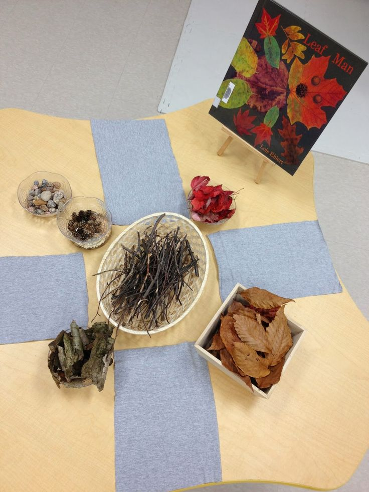 "Invitation to explore Leaf Man by Lois Ehlert - shared by Transforming our Learning Environment into a Space of Possibilities ("",)"