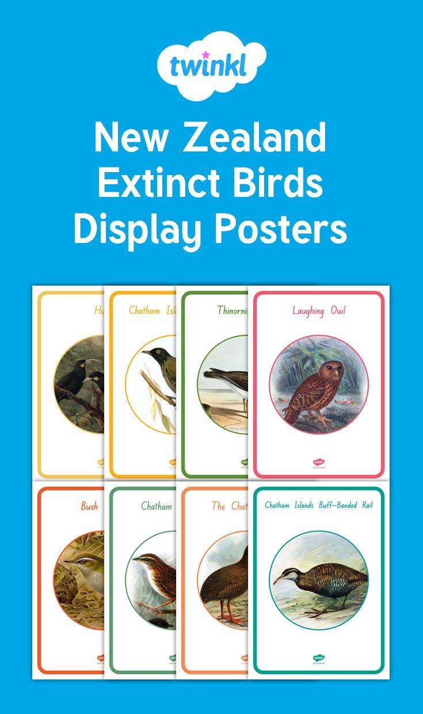 NZ extinct birds posters