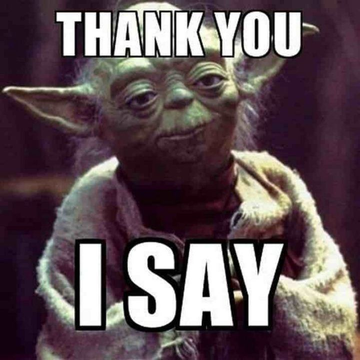 101 Funny Thank You Memes to Say Thanks for a Job Well Done | Funny thank you, Happy belated birthday meme, Thank you memes