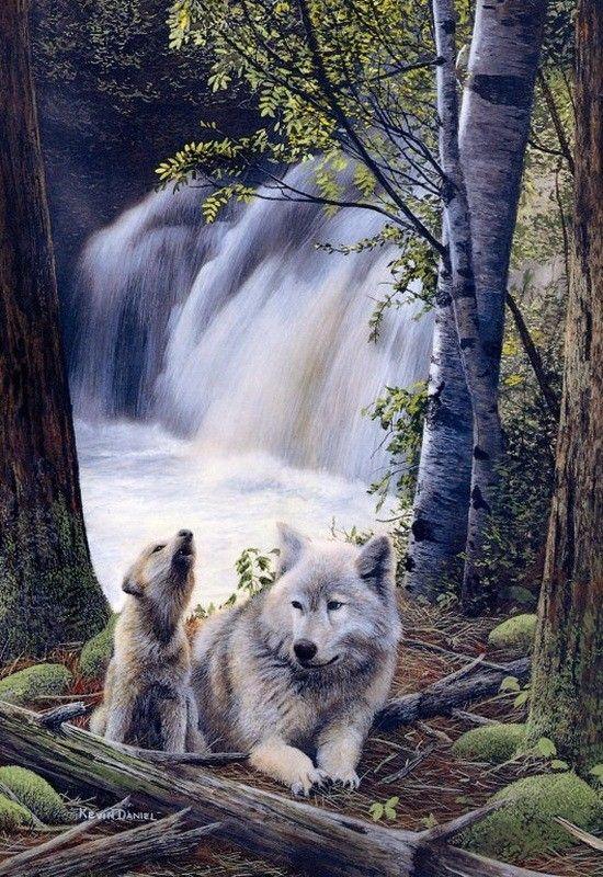 Mercredi 21 février 2018 5a6b0a459420d38a7f5c88d25e285d97--wildlife-art-art-paintings