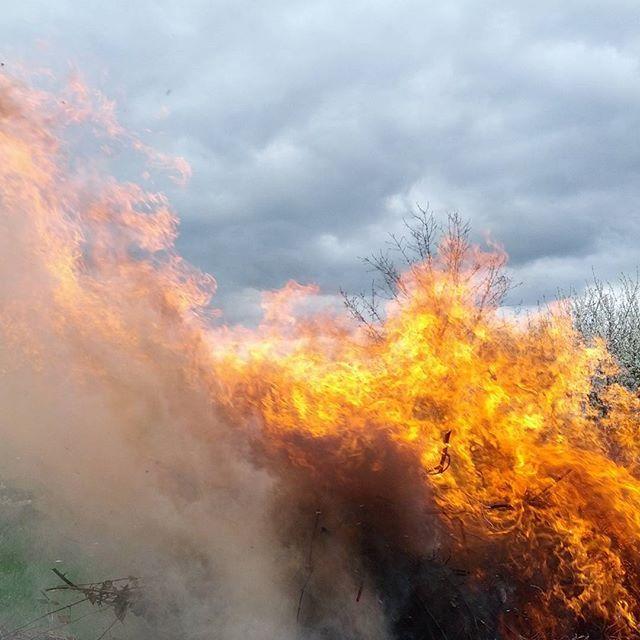 0x31f:+Oheň+/+Fire+(1)