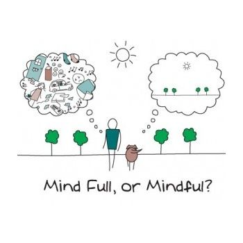 Use discount code PIN49 and get this Mindfulness Based CBT course, or our Mindfulness Diploma course for just £49.00 (Usually £329.00)