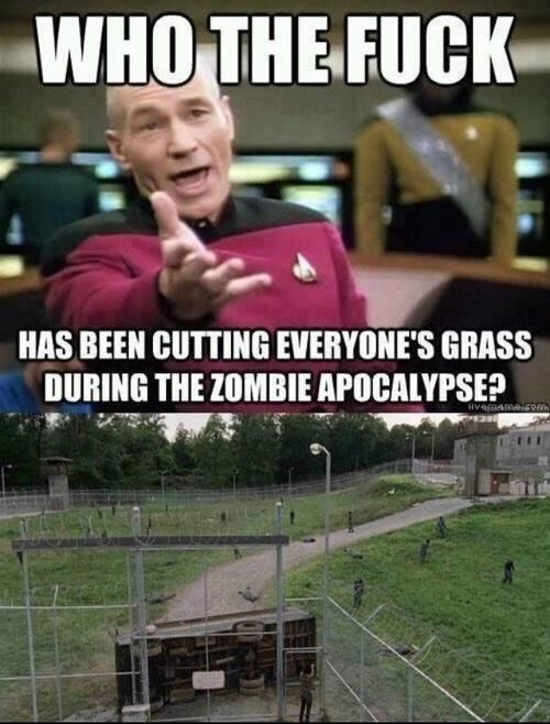 """The grass stayed mowed: 