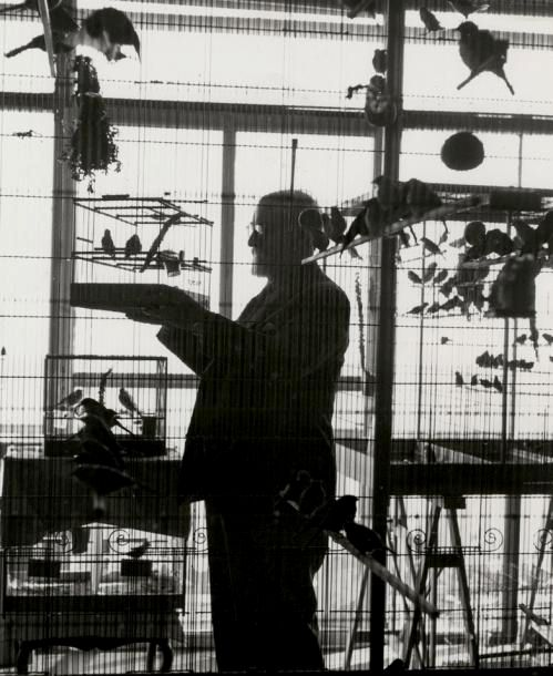 Henri Matisse at home, Nice, ca 1943 - by Roger Schall