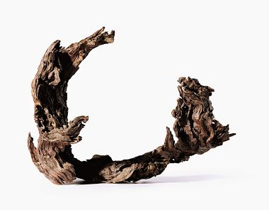 Splendida scultura cinese di radica andata all'asta ad Hong Kong http://www.sothebys.com/en/auctions/ecatalogue/2014/contemporary-literati-gathering- Wood Sculpture - Community - Google+