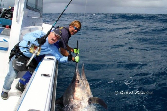 Hooked on Africa Fishing Charters - Deep Sea Fishing in Cape Town, South Africa