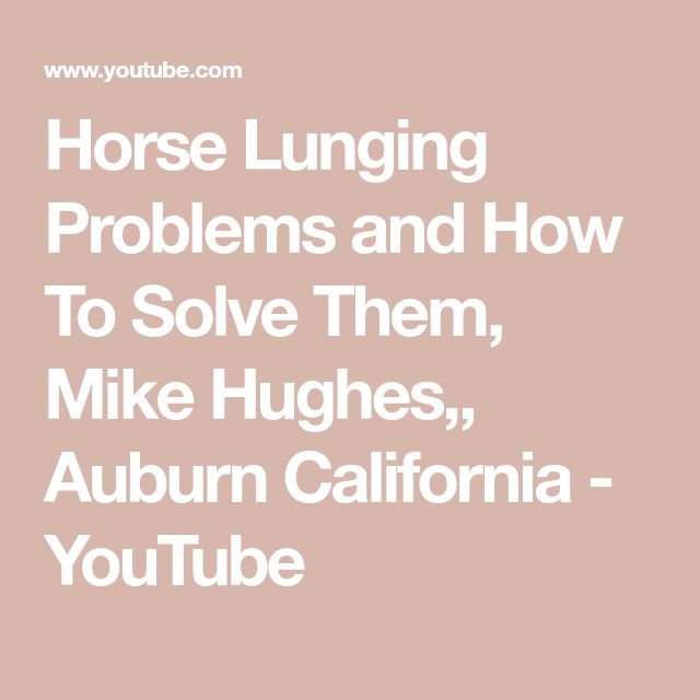Horse Lunging Problems And How To Solve Them, Mike Hughes