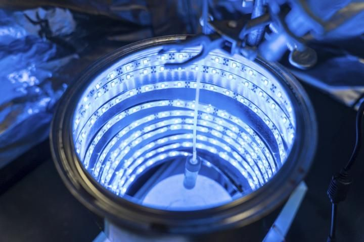 Synthetic Photosynthesis turning Greenhouse Gases into clean air and energy http://ift.tt/2pTSXgZ