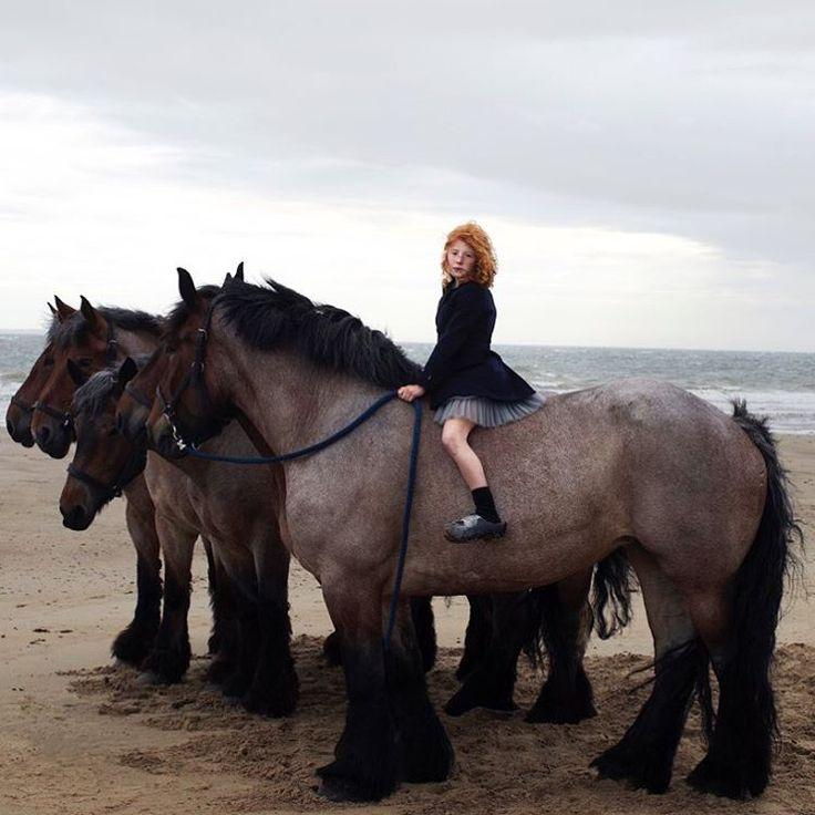Worbz – Igor Borisov   – Pferde