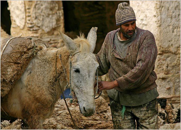 медина города Фес (Марокко)