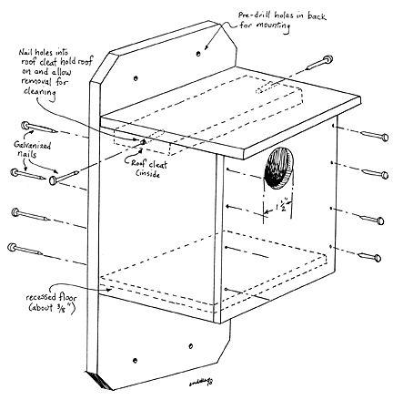 5a6df0fa3703161f00f3c62e35339430 hummingbird house design house and home design,How To Make A Hummingbird House Plans
