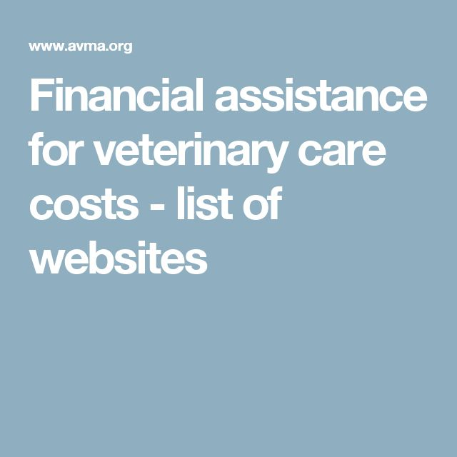 26 best Financial Aid images on Pinterest Cancer, Dog and - fresh sample letter requesting financial assistance for surgery