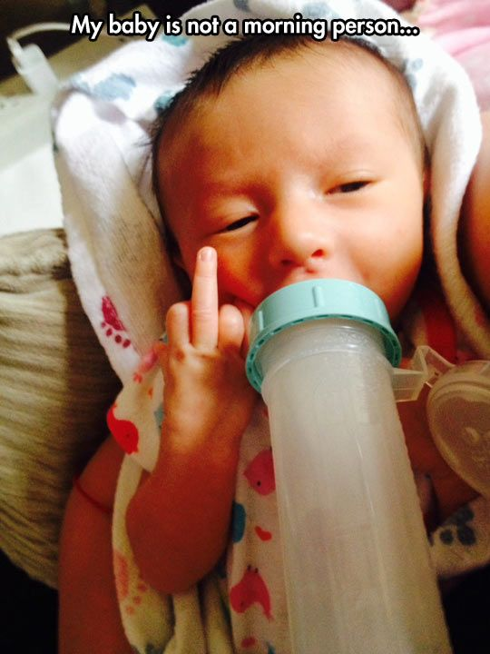 Not a Morning Baby // funny pictures - funny photos - funny images - funny pics - funny quotes - #lol #humor #funnypictures