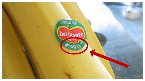 While you purchase fruit, you probably notice the labels on them. But, have you ever thought about...