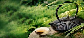 Zubereitung von grünem Tee